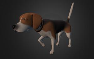3D online – szczeniak rasy Beagle